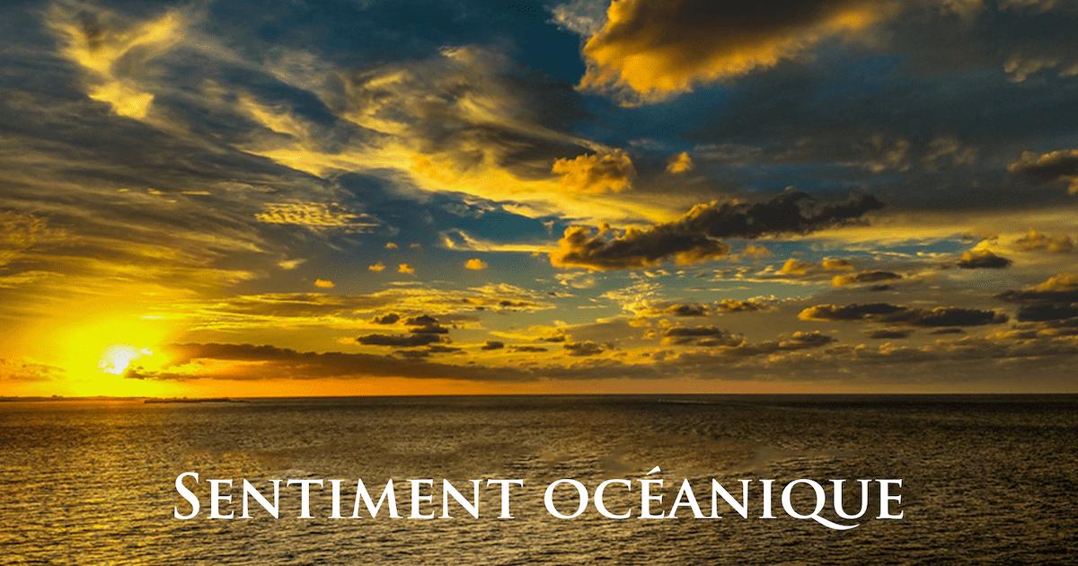 Qu'est-ce qu'un sentiment océanique?