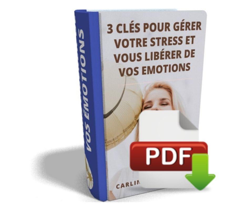 ebook gestion stress